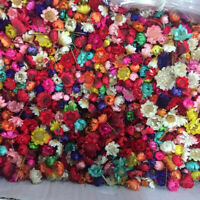 1g Small Dried Flower Head Daizy Glass Cover Nail Art Filling Epoxy Craft DIY