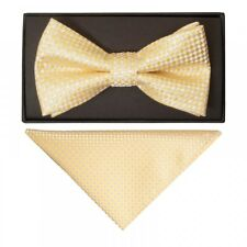 Gold Diamond Neat Mens Bow Tie and Pocket Square Set Dickie Bow Handkerchief