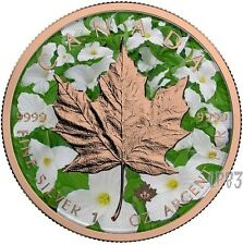 2016 1 Oz Silver SPRING MAPLE LEAF Coin WITH 24K ROSE Gold Gilded.