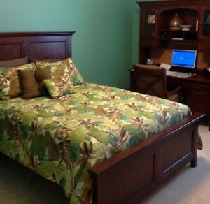 Victor Mill Bahia Queen Duvet With shams and accent pillows