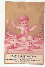 Weed & Hutchinson Pictures & Frames Boston Ma Naked Baby Frog Vict Card 1880s