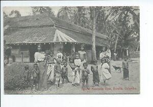 Printed postcard  a typical roadside view Borella Colombo Ceylon good condition