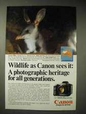 1986 Canon T90 Camera Ad - Greater Bilby