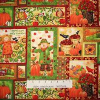 Fall Fabric - Grateful Harvest Scarecrow Bird Owl Patch - Spectrix SPX YARD