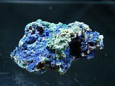 Azurite  w/ Malachite- Silverhill Mine, Arizona  66-14