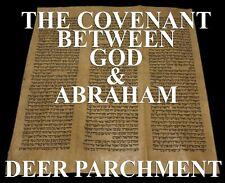 TORAH SCROLL BIBLE VELLUM MANUSCRIPT LEAF 350 YRS MOROCCO Genesis -14:15-17:25