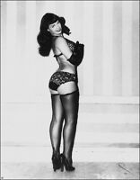 Vintage Bettie Page Photo 646 Oddleys Strange & Bizarre 4 x 6