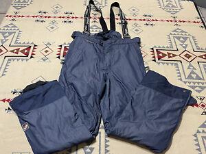 Spyder US SKI TEAM Bib Ski Pants Men's L XTL 10k Full Schoeller Thinsulate A4