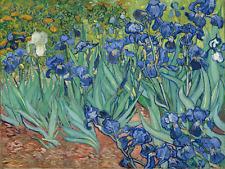 VINCENT VAN GOGH IRISES garden green flowers art print reproduction on canvas