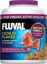 Cichlids/Discus