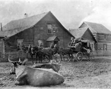 """Royal Mail Stage Coach at rest stop 1898 Cowboy Pioneer 8""""x 10"""" Photo 82"""