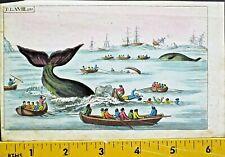 Whaling Scene,Wilhelm,Unterhaltungen,Saeugetiere,hand colored Engraving,1806