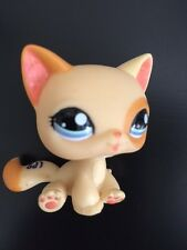 LPS Littlest Pet Shop Orange Cream Yellow Kitty Cat #1521 Sitting from US Seller