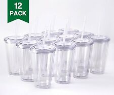 NEW 12 Insulated Double Wall Tumbler Cup with Lid, Reusable Straw, 16 oz (Clear)