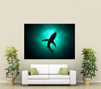 Shark Silhouette Giant 1 Piece  Wall Art Poster AN110