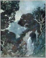ART BY EDMUND DULAC 1909 RUBIAYAT 8X10 ART PRINT 28012005522