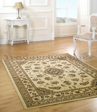 EXTRA LARGE BEIGE CREAM CLASSIC TRADITIONAL RUG 200x290