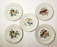 """Vintage Porcelain Bird Plates Set of 5 with Gold Rims 4"""" Made in Japan Robins"""