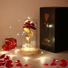 PREUP Beauty and The Beast Rose, Forever Rose Flowers Light in Glass for