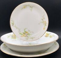 Limoges France - Wm Guerin - Fleur De Lis - Hand Painted 3 Pc. Set - 2 Available