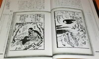 RARE Japanese Yokai Monster ukiyo-e picture in EDO period book from japan #0687