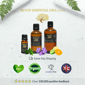 48 Highly Concentrated Citronella 4hr Coils Made with Plant Based Ingredients