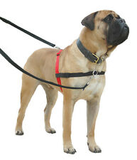 Halti Non Pull Harness For Large Dogs L Size Dog Training Control