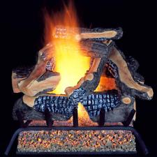 ProCom Vented Natural Gas Fireplace Log Set - 24 in., 55,000 BTU, Model WAN24LA