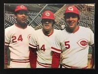 "Cincinnatti Reds Johnny Bench, Pete Rose, Tony Perez PICTURE Full Color 15"" x 10"