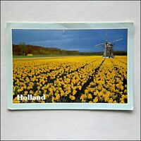 Holland Greetings 2002 Postcard (P432)