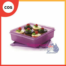 Tupperware B2b Snack Outdoor Storage Pink Square Container 4l
