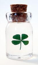 """SHAMROCK """"BOTTLE O' LUCK"""" w/Description - GENUINE 4-Leaf-Clover! - Good Luck!"""