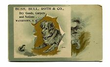 Victorian Trade Card BUSH BULL ROTH & CO DRY GOODS Watertown NY dog with frog