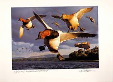 OREGON #14 1997 STATE DUCK STAMP PRINT Med Ed + 2 stamps by Robert Steiner