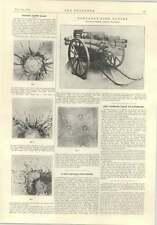 1914 FULLARTON Vibrometro portatile Autopompa gwynnes TRIPLEX vetro di sicurezza