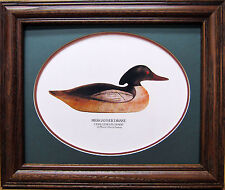 Mason Challenger Grade Merganser Drake Decoy Detroit Mi Co. Giclee Framed Photo