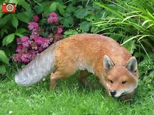 A PROWLING FOX,  LIFE SIZE & STUNNING FOR HOME & GARDEN. ULTRA REAL & INCREDIBLE