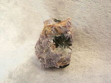 Charoite, Tinaksite, and Aegirine (small specimen see weight and size)