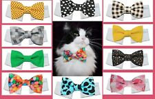 New Cat Bow Tie & Shirt Collar | Many Styles and Colors Easter Spring Color