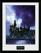 Harry Potter Hogwarts Painted - Mounted & Framed Print
