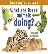What Are These Animals Doing? (Looking at Nature)-ExLibrary