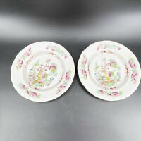Vintage Booths Silicon China England Indian Tree Transferware Plate Lot of 2