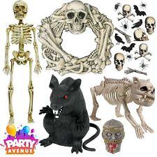 Boneyard Esqueleto Halloween Fiesta Decoraciones Props