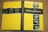 Fachbuch Wildkrankheiten, Jäger, Tierarzt, Förster, Jagd, Wild, DDR 1957