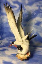 """Gorgeous VTG 14"""" Hutschenreuther Kunstabteilung Granget Seagull Birds Figurine"""