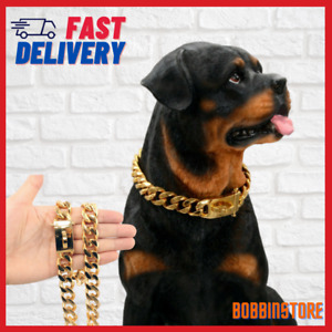 Gold Dog Collar Solid Stainless Steel Dog Choke Big Dog Outdoor Walking Chain