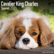 Cavalier King Charles Calendar 2021 Premium Dog Breed Calendars