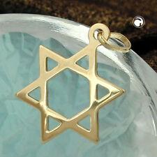 585 Gelbgold Goldanhänger Hexagramm 17x13mm David-Stern 14Kt GOLD Unisex