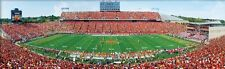 Jigsaw puzzle NCAA Iowa State University Jack Trice Stadium NEW 1000 piece