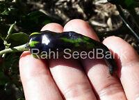 Black Orchid Eye Chilli - A Rare, Stunning Medium Hot Beautiful Chilli Variety!!